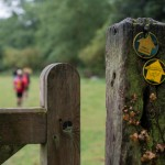 The Stour Valley Path waymarker